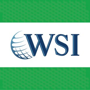 WSI eMarketing for internet and digital marketing solutions